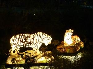 1 tigers